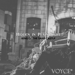 Hidden in Plain Sight Album cover photo